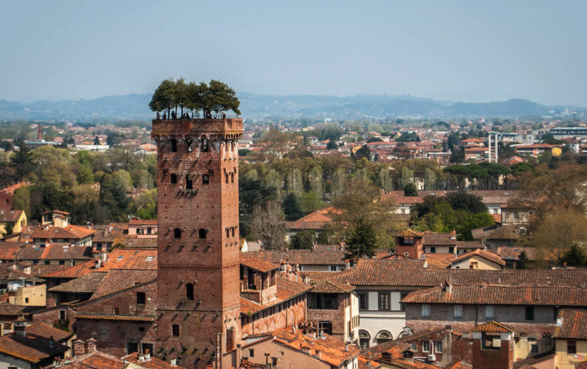 The Torre Guinigi dates from the 1300s and has an impressive garden at the top which is open to anyone who wishes to climb the stairs!