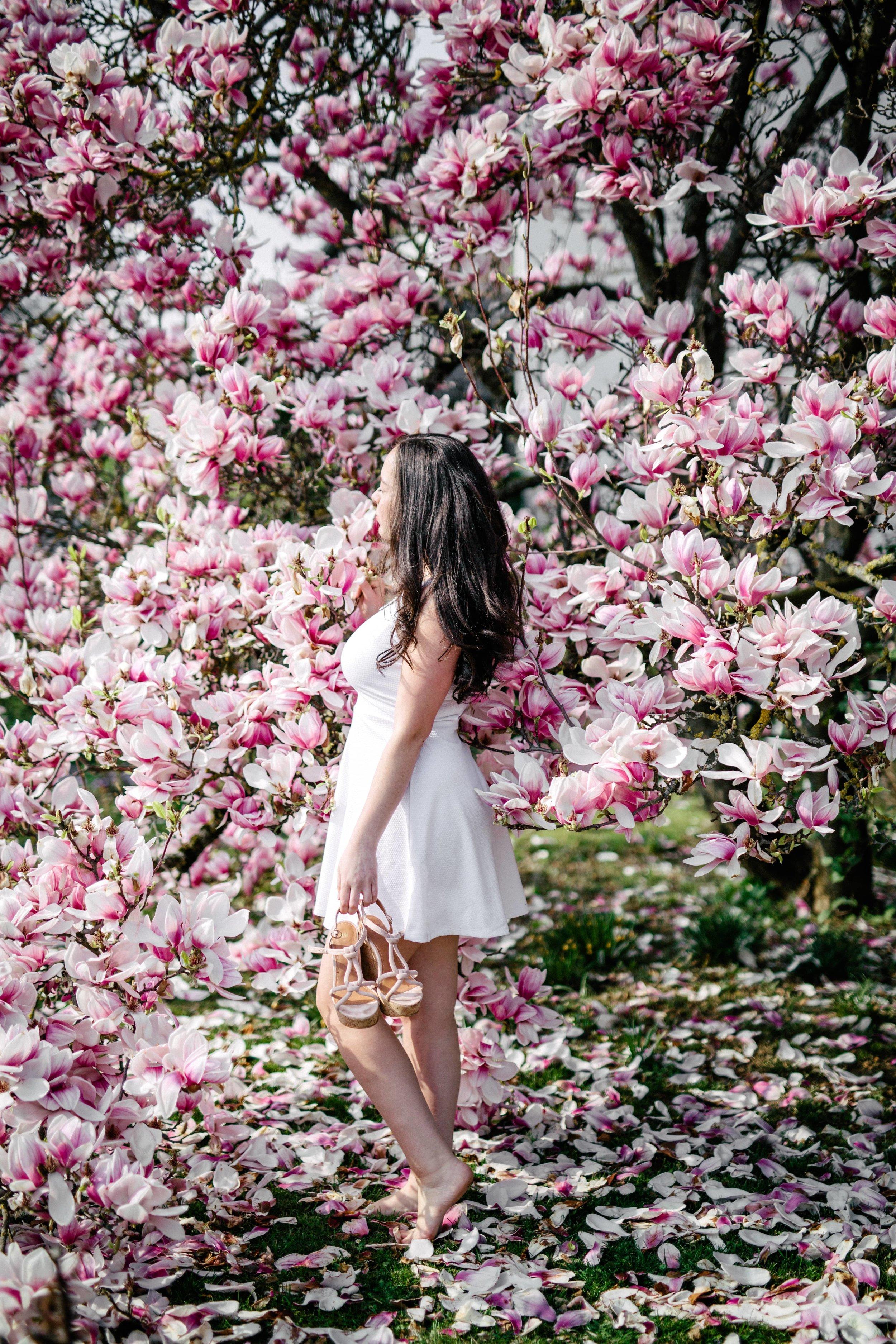 Frühling-24.jpg