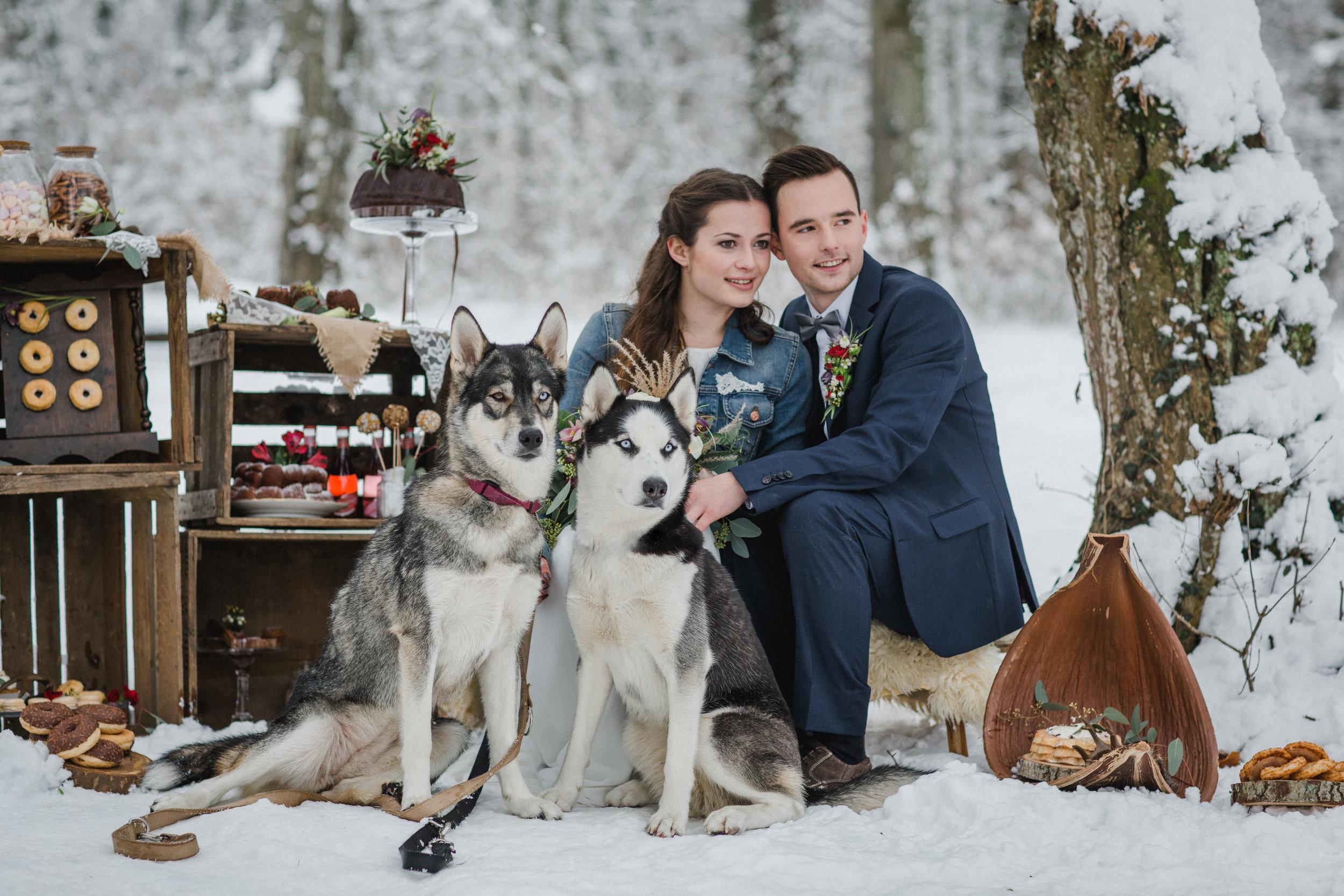 yessica-baur-fotografie-styleshooting-huskies-4092.JPG