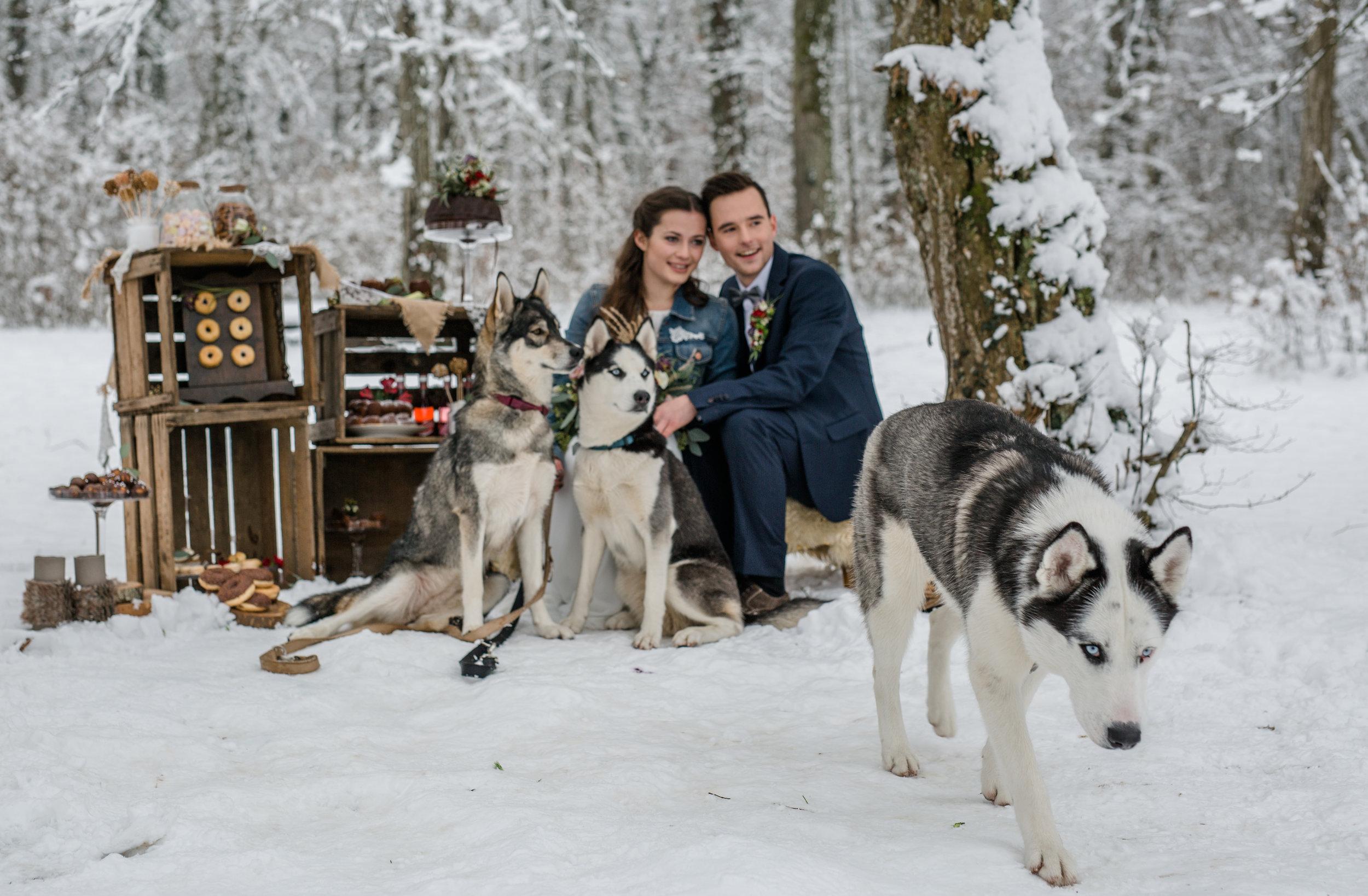yessica-baur-fotografie-styleshooting-huskies-7980.JPG