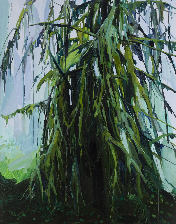 "Tree , 2016, Oil on canvas, 84 x 66"""