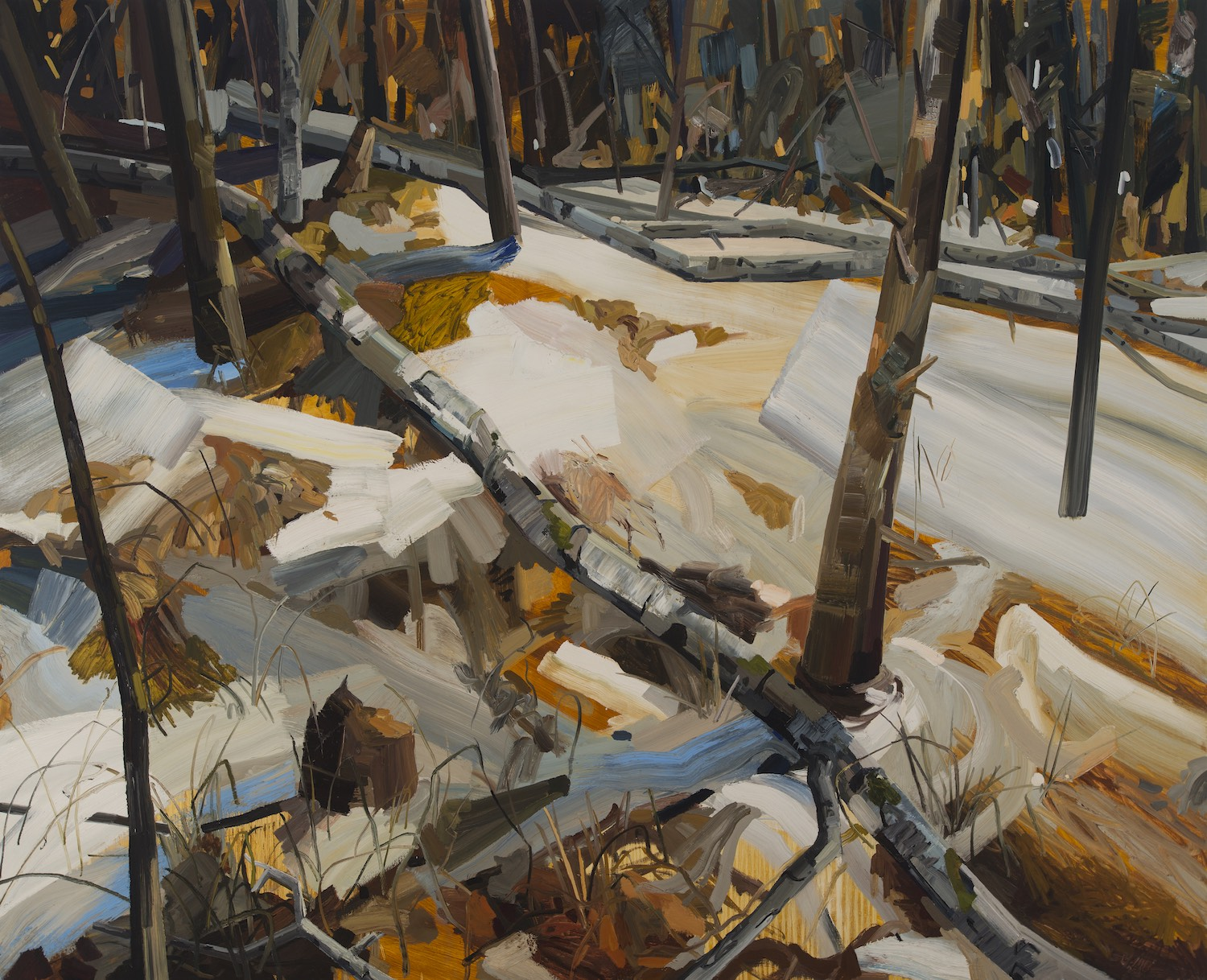 """Woods and Snow , 2008, Oil on canvas, 78 x 96"""""""