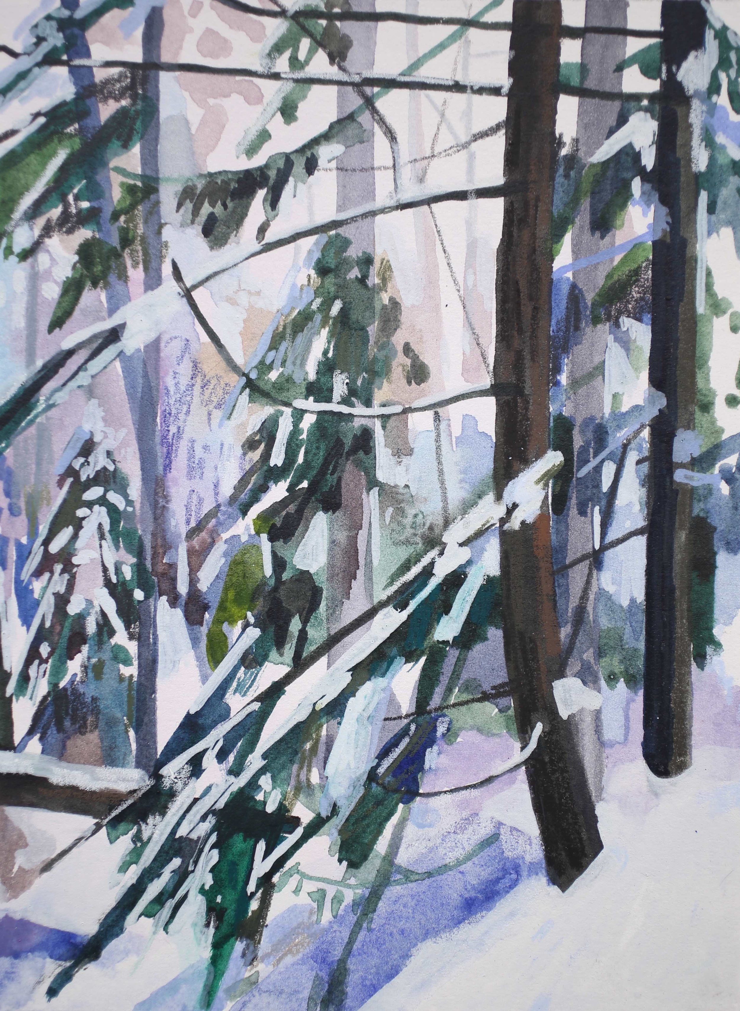 Snow and Trees, 2017