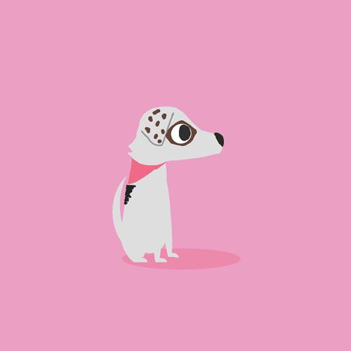 Pets' Trust Miami    I'M GONNA KILL MY DOG    View Dog