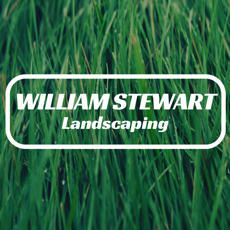 William Stewart.png