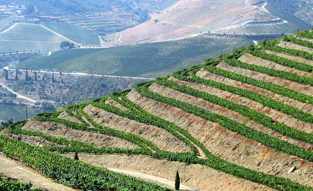 The dramatic landscape of the Douro Valley.