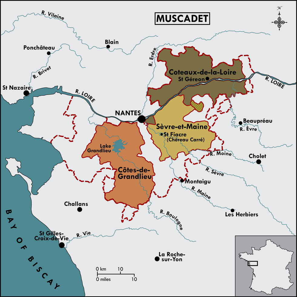 Map of the Muscadet production zones. Chéreau Carré is an important producer of Muscadet wines Image credit:  DeMaison Selections