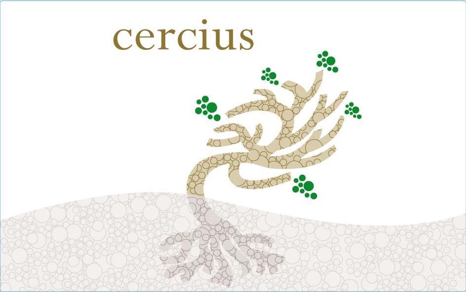 cercius.jpg