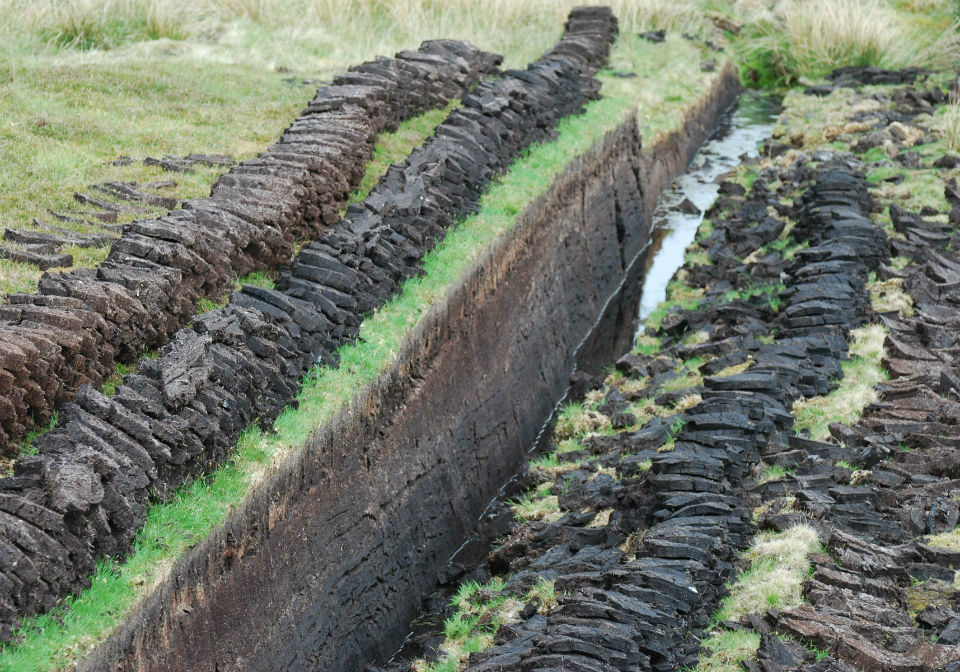 Peat block cut from the earth and stacked up ready to use.