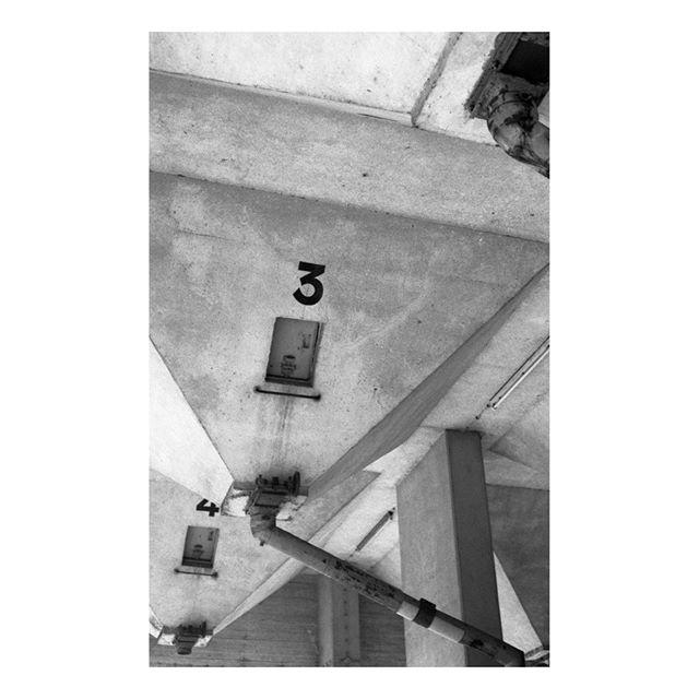 .⠀ .⠀ .⠀ #leica #leicam2 #ilfordfp4 #ilfordfp4plus #foma #fomadonexcel #shootfilmbenice #35mm #35mmfilm #madeinwetzlar #leicacraft #ilfordphoto #ilfordfilm #filmphotographic #filmphotography #filmisnotdead #believeinfilm #filmisalive #filmcommunity #grainisgood #analogphotography #wasteoffilm #dontfearthegrain