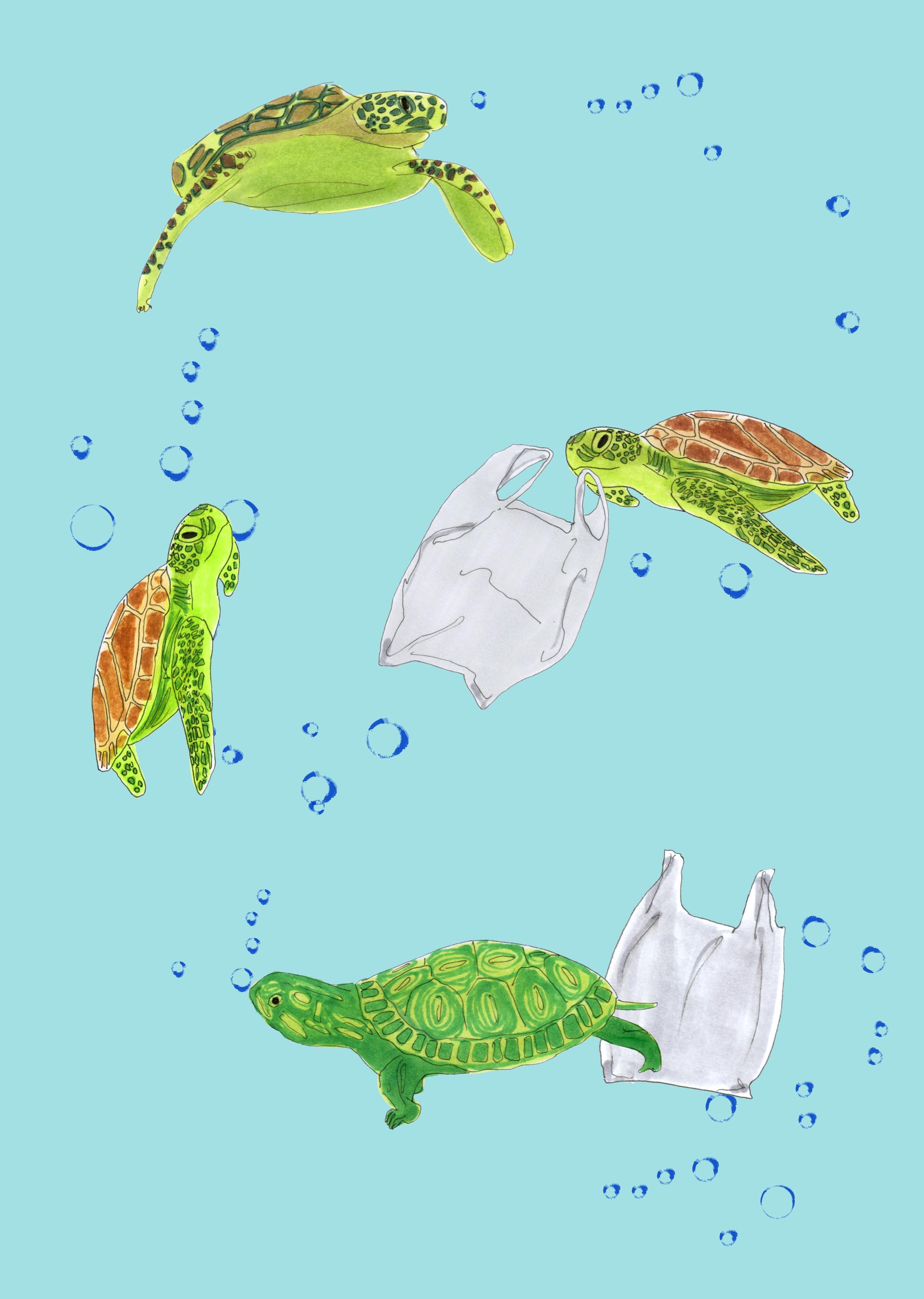 Illustration by Juliet Sulejmani for Wardrobe Crisis.