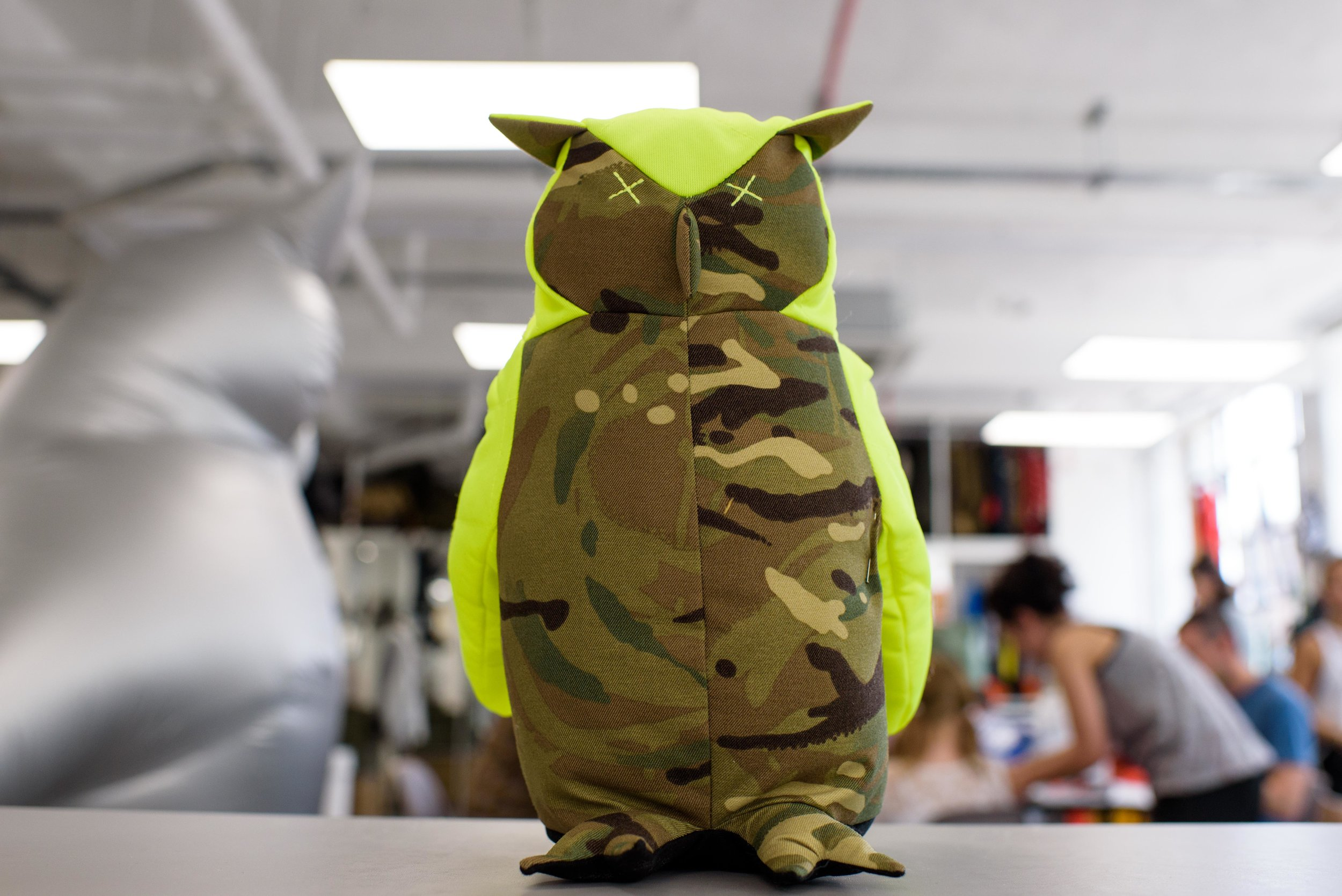 170617-Raeburn-Owl-Workshop-0064.jpg