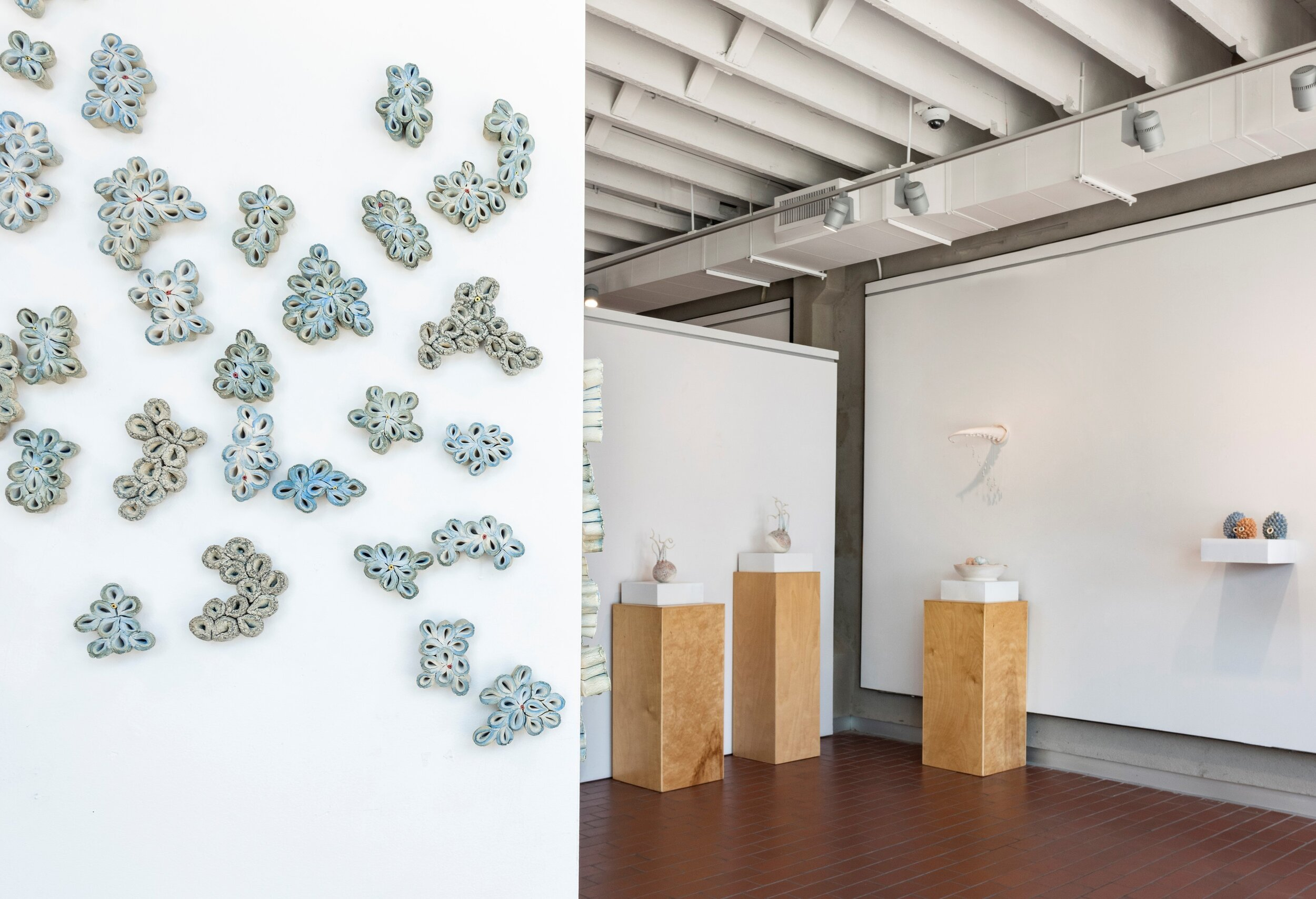 Cultivated on Dry Land   at Georgetown Art Center