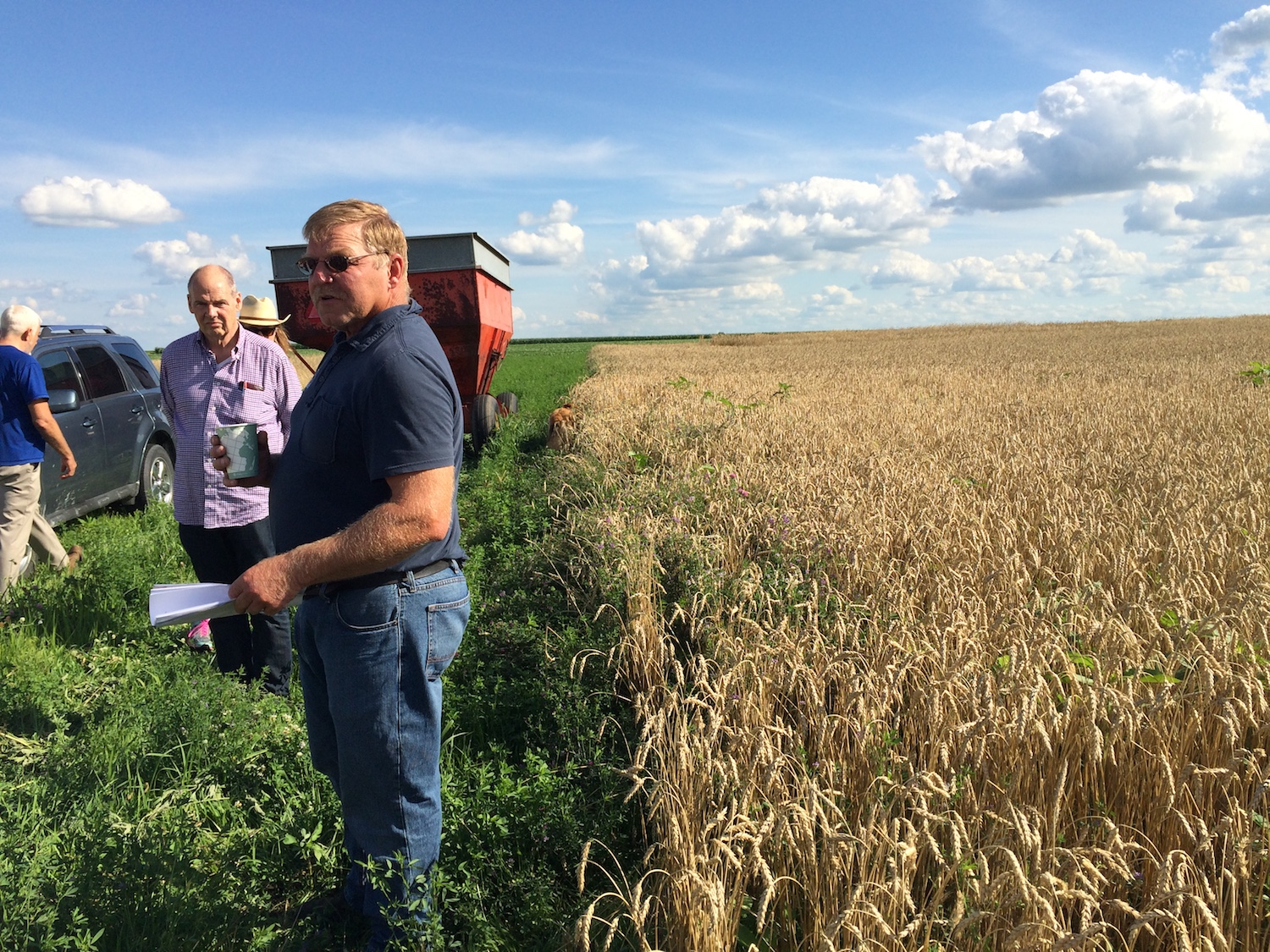 Harold on a field day in June as the wheat ripens for harvest.