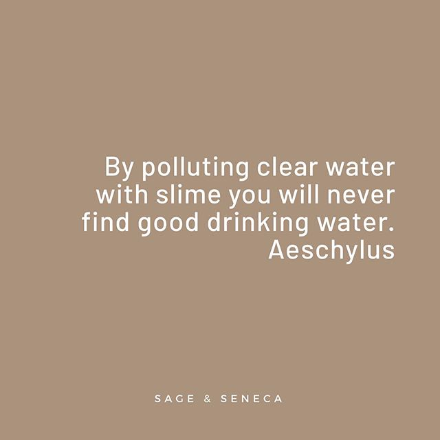 By polluting clear water with slime *chemicals, plastic, etc.* you will never find good drinking water. -  Aeschylus . . . . #goodquotes #clearwater #greekpoetry #cleanwaterforall #waterpollution #waterpollutionawareness #plasticfreeoceans #cleandrinkingwater #flintmichigan #cleanwaterproject #cleanourrivers #righttocleanwater #environmentalquotes #quotesabouttheenvironment