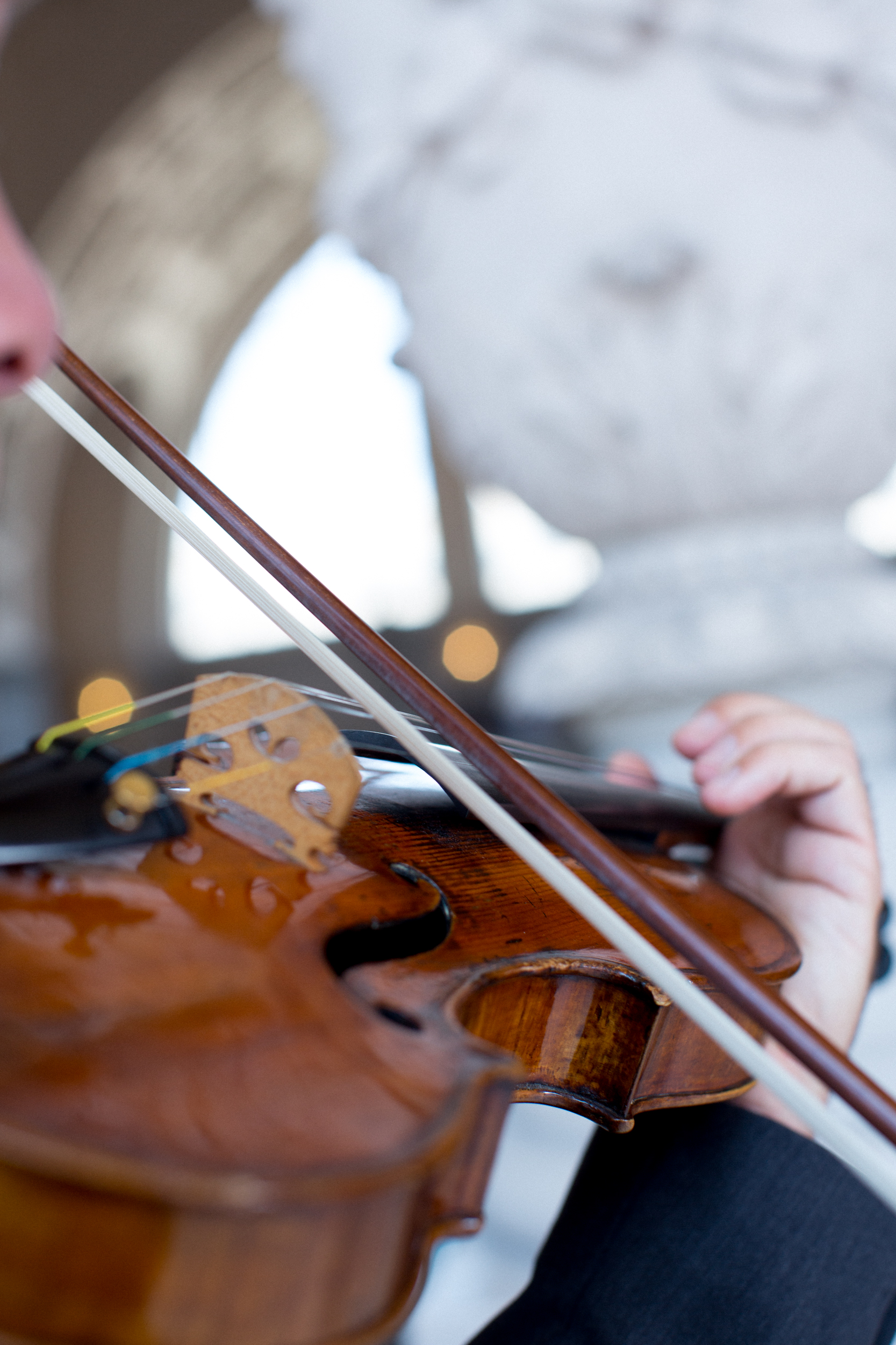 Graham Terry, violin