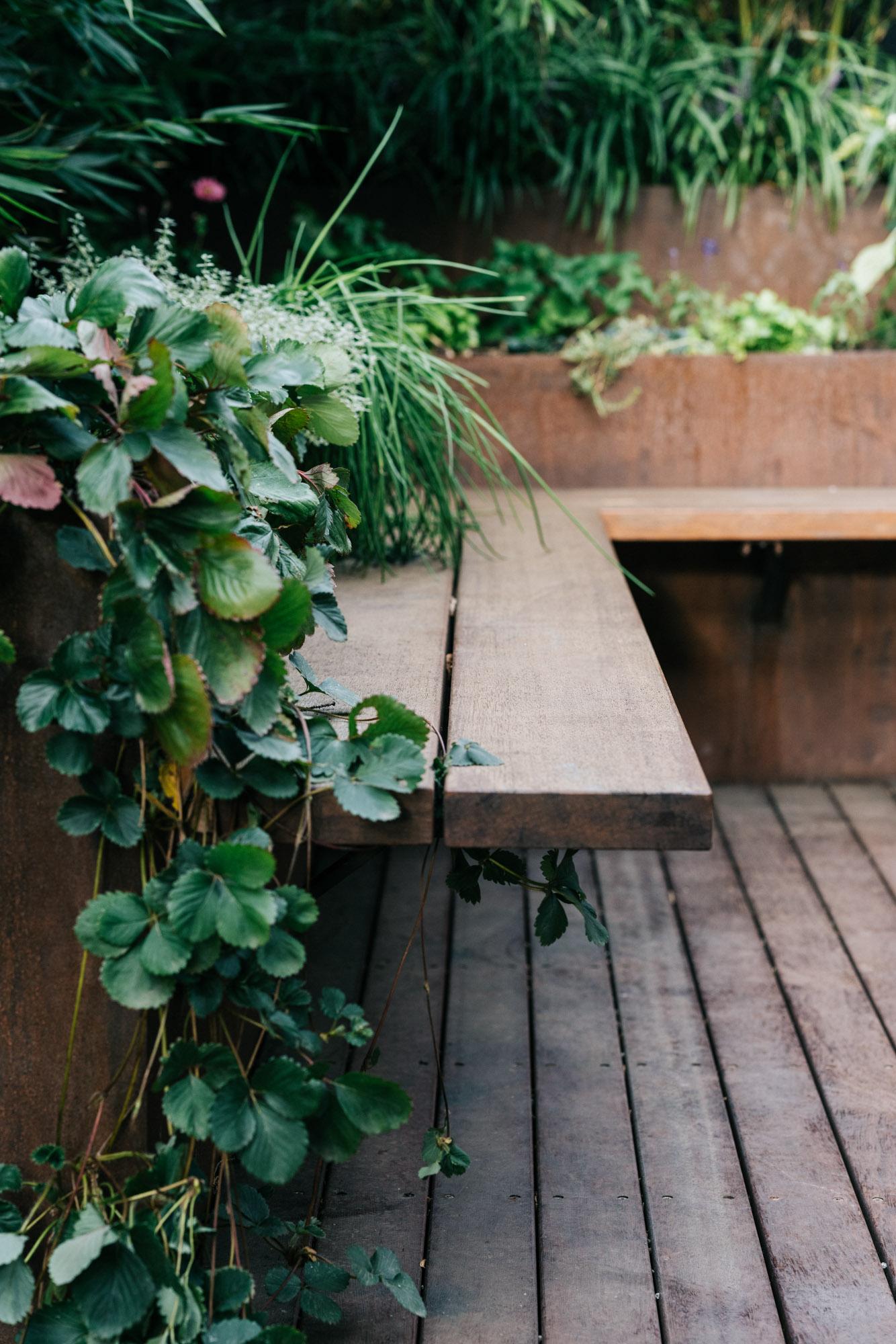 KM Landscape Design_Woodend, Morris Road_low res-47.jpg