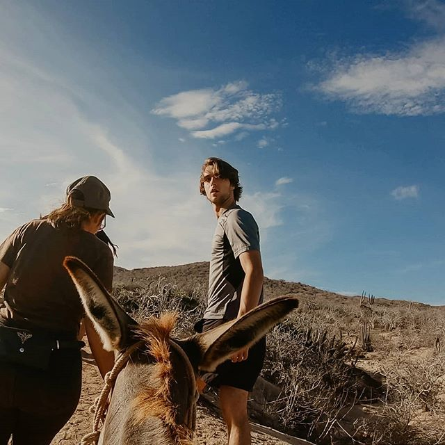 Going through some BTS footage and found this shot of Tamas from our Donkey Cam. ⠀⠀⠀⠀⠀⠀⠀⠀⠀ Mexico done, Korea next! ⠀⠀⠀⠀⠀⠀⠀⠀⠀ Mexico is just the first stop - part of our global project to visit and learn different cultures around the world. Make sure to check out our upcoming series on Instagram and YouTube about our journey and wedding adventures! And if you haven't already, make sure to check out our our inspo page @WeddingPhotoMag for more daily inspiration!⠀⠀⠀⠀⠀ ⠀⠀⠀⠀⠀⠀⠀⠀⠀ #destinationwedding #elopement #destinationweddingphotographer #engagementshoot #indiebride #rusticwedding #brideandgroom #loveauthentic #adventurouswedding #couple #couplegoals #relationship #relationshipgoals #wedding #love #lovequotes #coupleshoot #bohowedding #weddinginspiration #weddinginspo #outdoorwedding #loveintentionally #vancouver #instawedding #wanderlust #thatsdarling