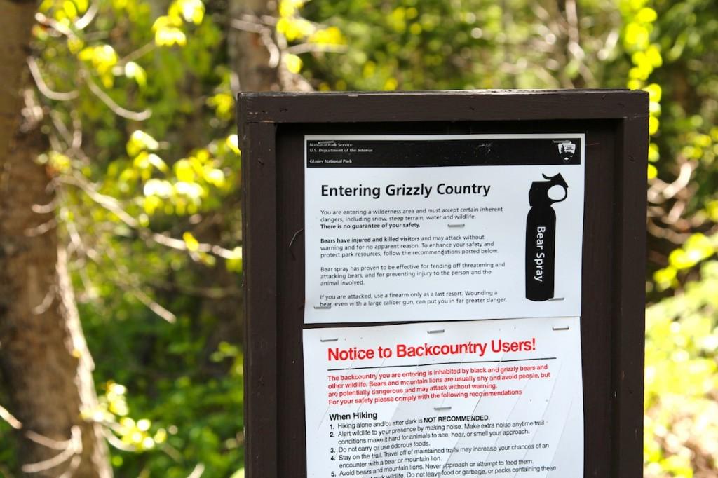 Glacier National Park hiking trail