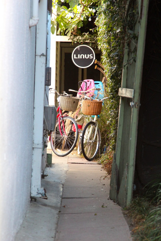 Linus bike shop, Venice, California