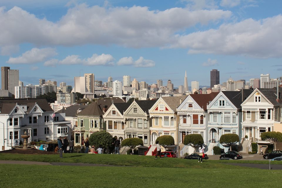 Painted-Ladies.jpg