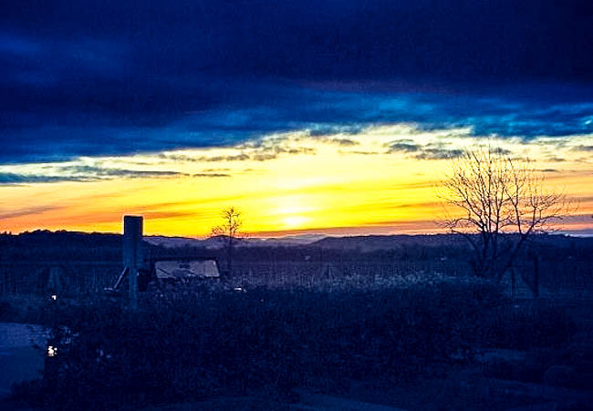 Sunset-from-Medlock-Ames-patio.jpg