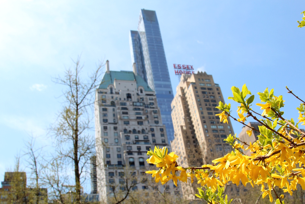 Central Park Manhattan Spring