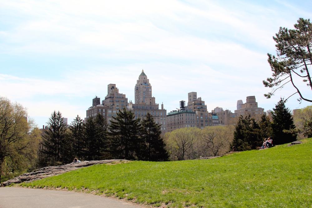 Central Park Manhattan Skyline