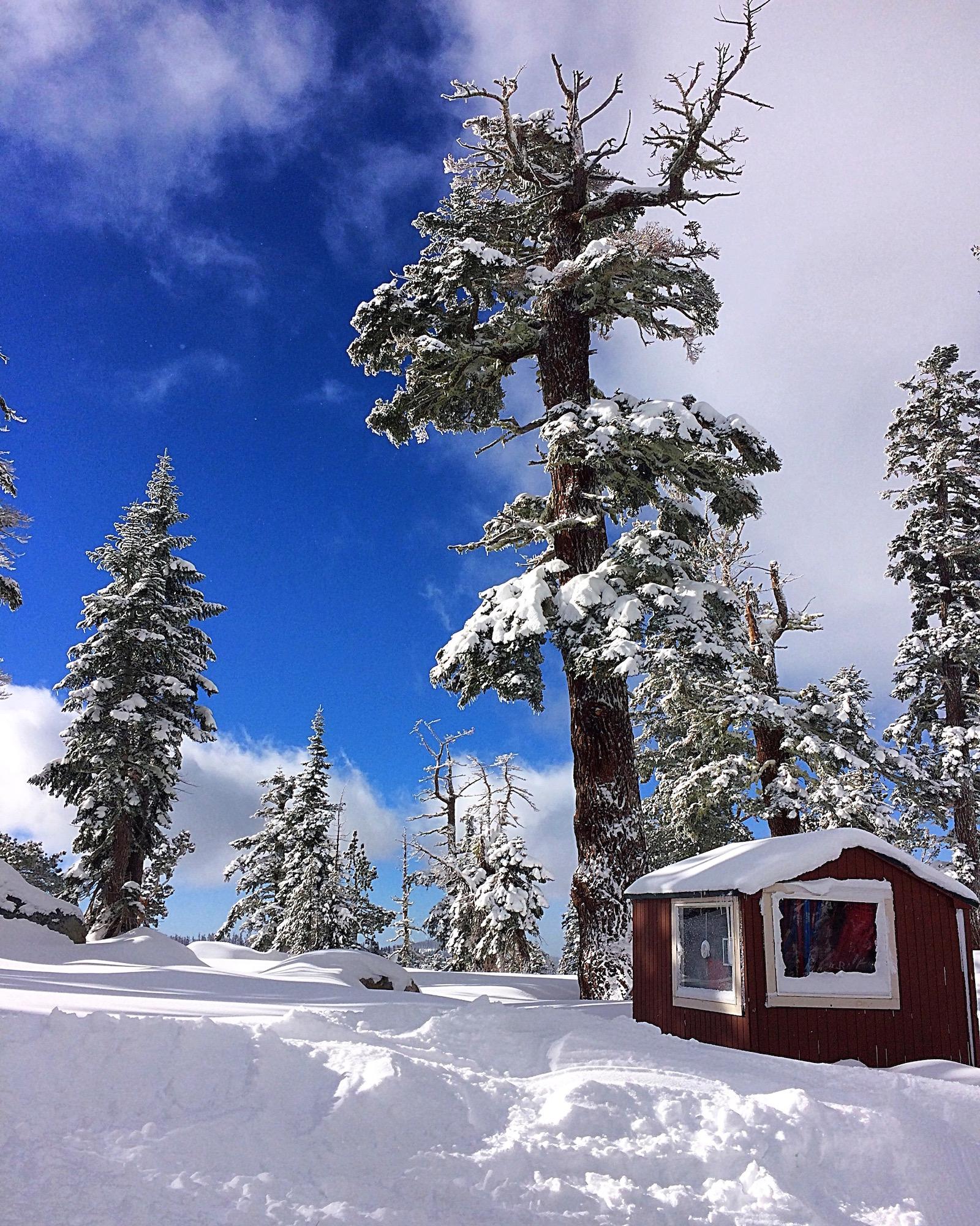 Sierra-at-Tahoe-top-of-the-mountain.jpg