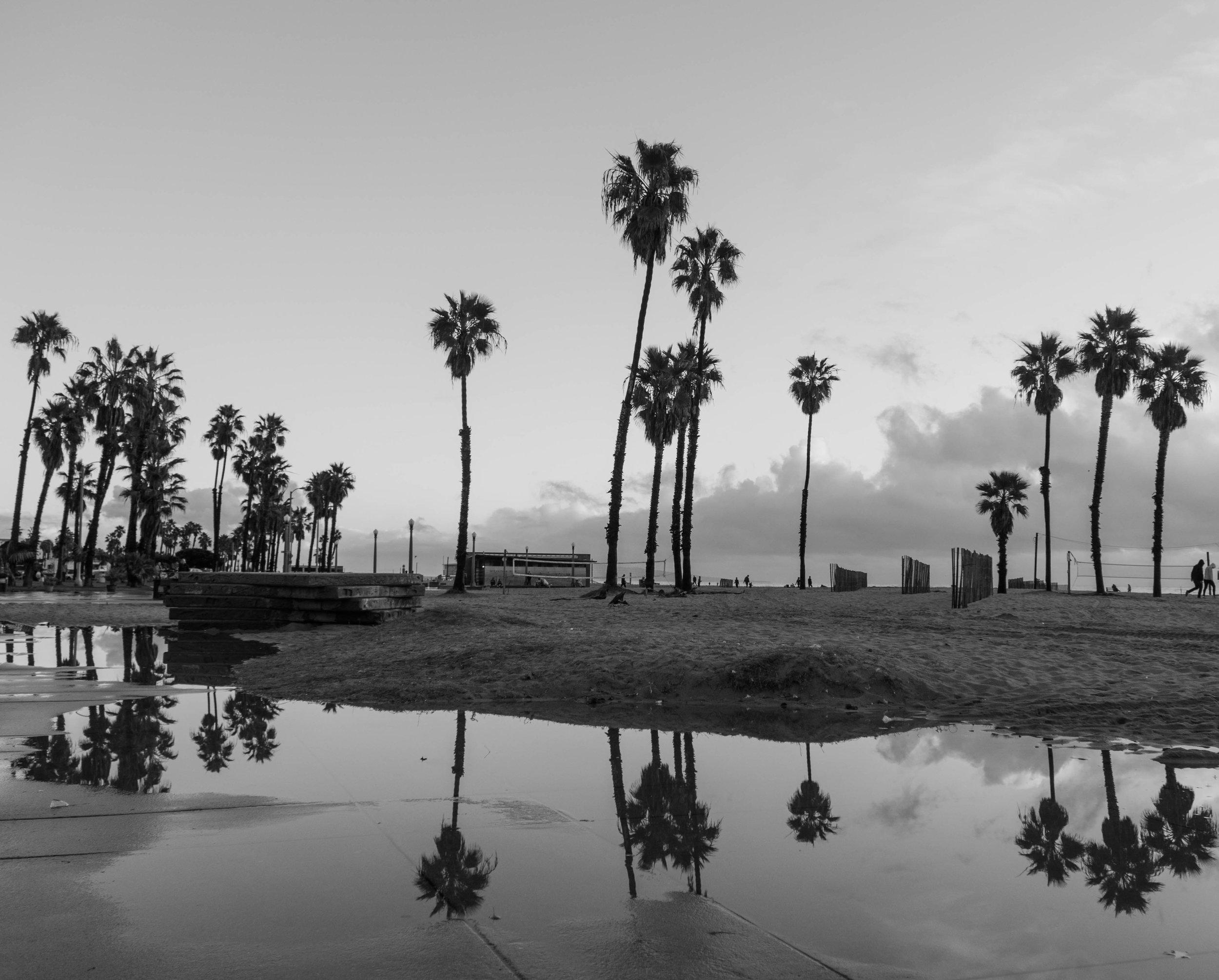 Day 9.1 Venice Beach.jpg