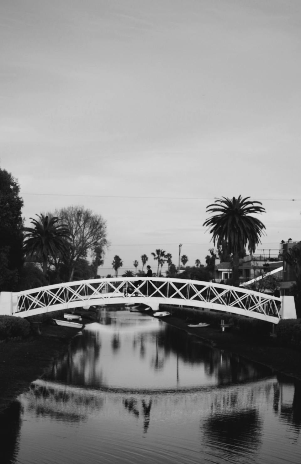 Day 15 Venice Canals.JPG
