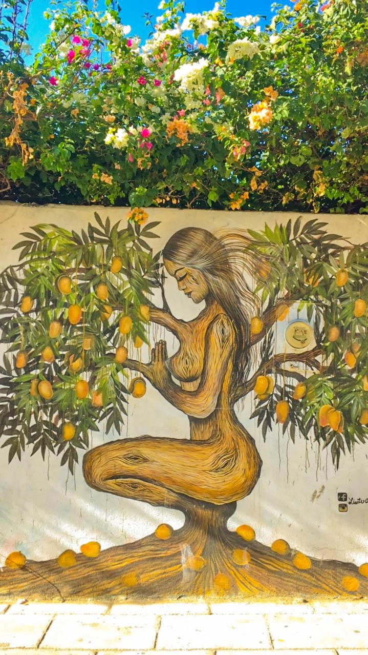 Puerto Escondido street art