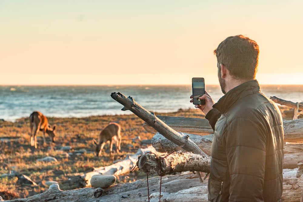 Lost Coast wildlife.jpg