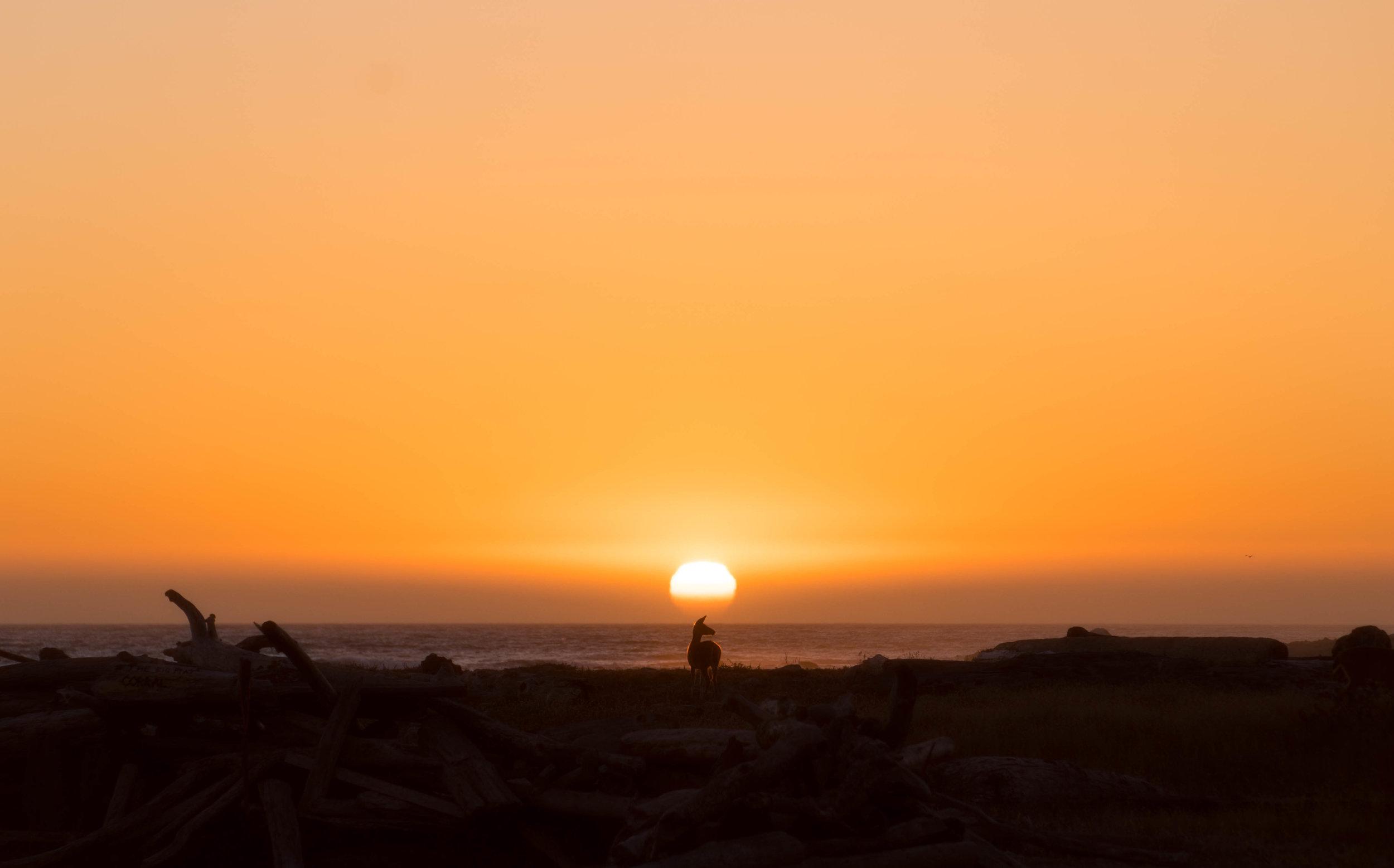 North Coast sunset.jpg