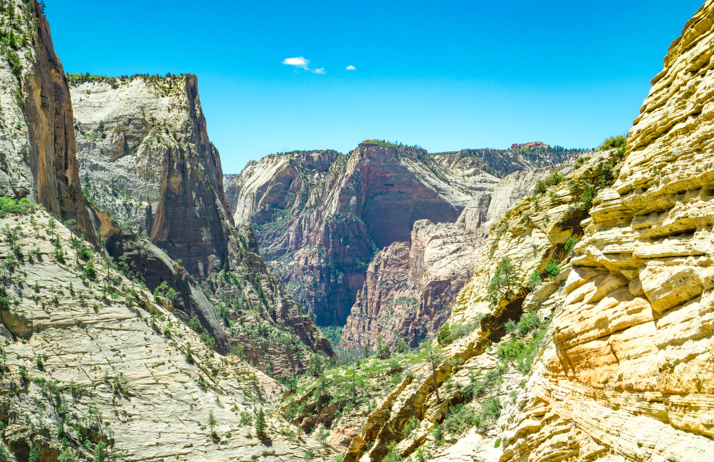 zion observation point.jpg