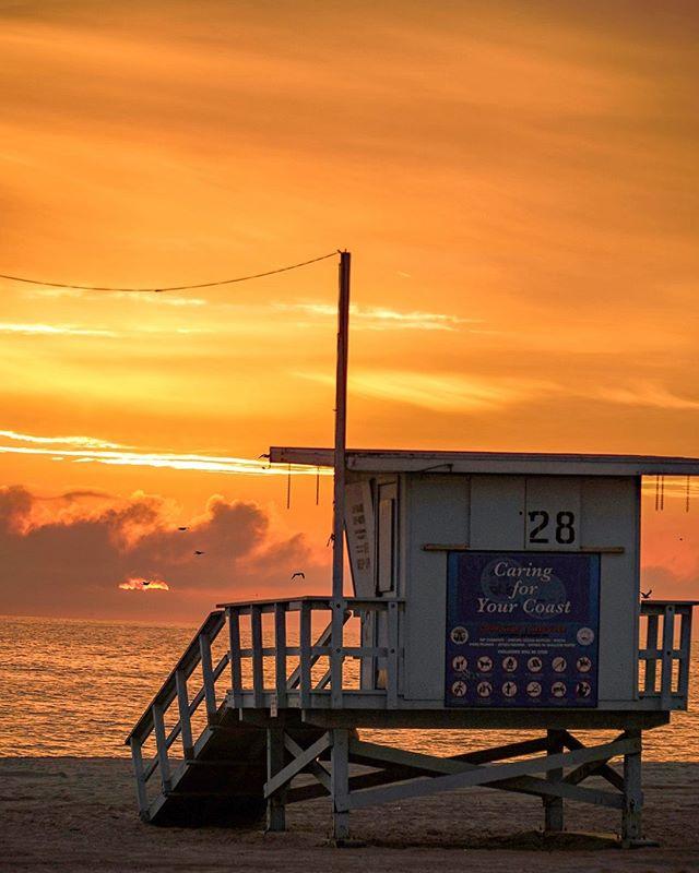 You're a vibe LA. A Baywatch vibe. #discoverla #sonyalpha