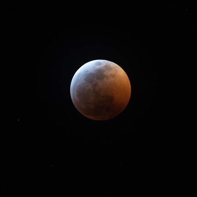 It's a mouthful, Super Blood Wolf Moon! #superbloodwolfmoon #lunareclipse #supermoon #bloodmoon #wolfmoon #dallas #frisco