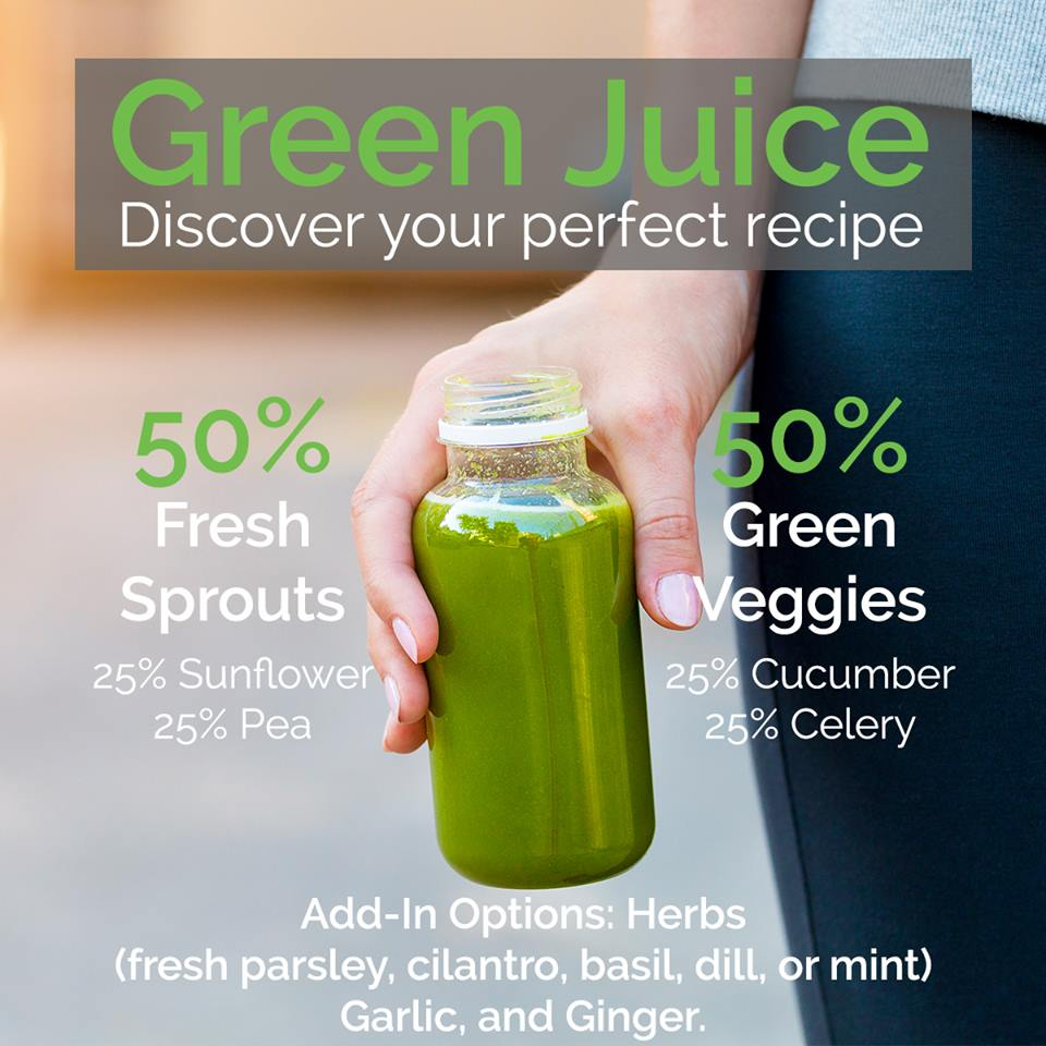 The best green juice recipe from The Hippocrates Health Institute.