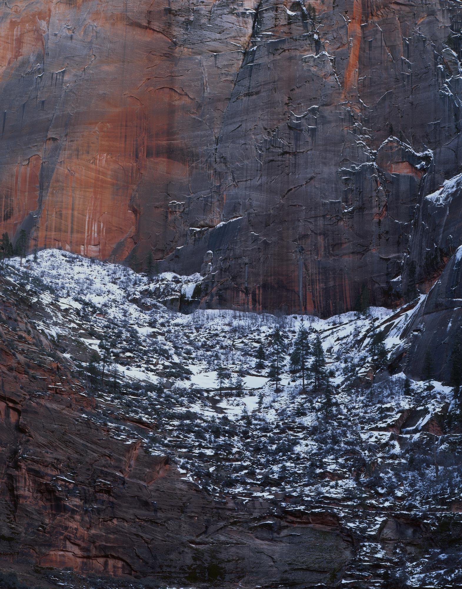 Canyon Wall  | Zion National Park, Utah