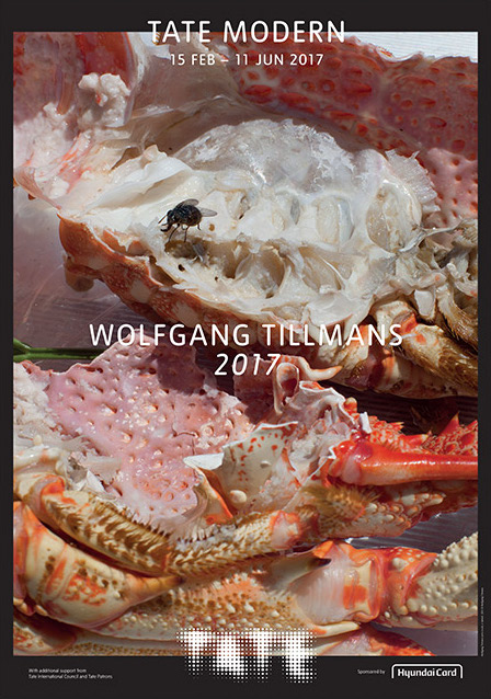 Poster for the Tate's Wolfgang Tilmans exhibition.