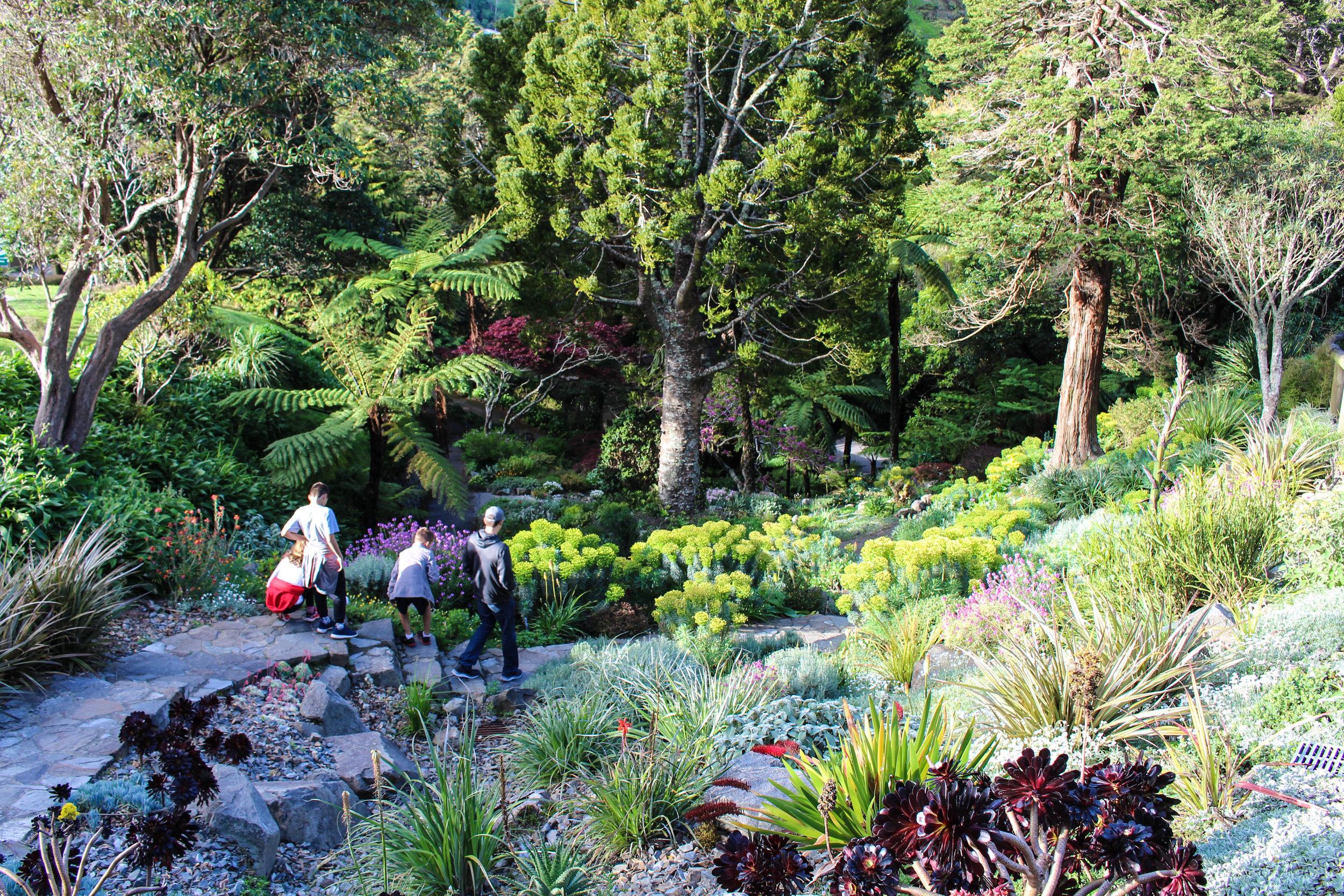 family-botanical-garden-1-of-1