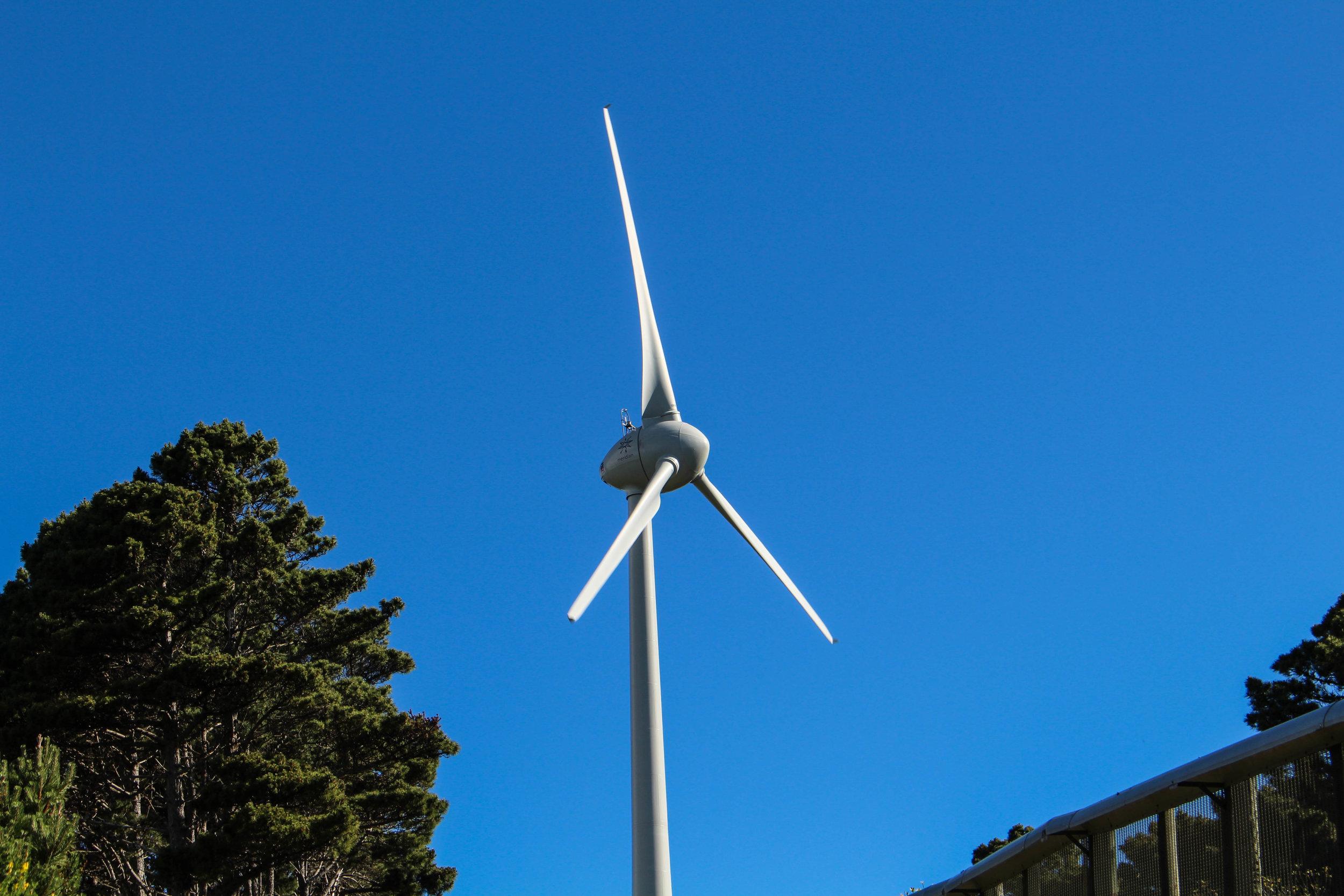wind-turbine-1-of-1.jpg