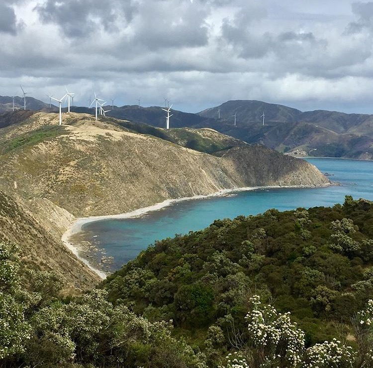 Makara Wind Turbines