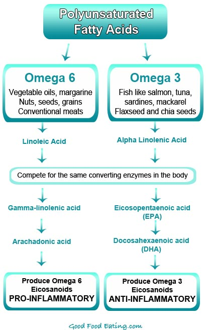 Omega-3-vs-Omega-6-Fatty-Acids.jpg