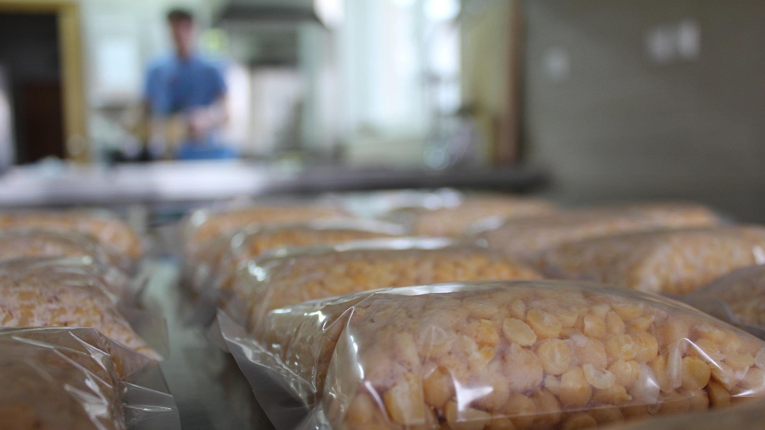 Žepki s čičeriko so pripravljeni na to, da jih zložimo v inkubator, kjer bodo postali tempeh.