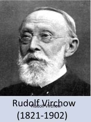 Rudolf VIRCHOW.PNG