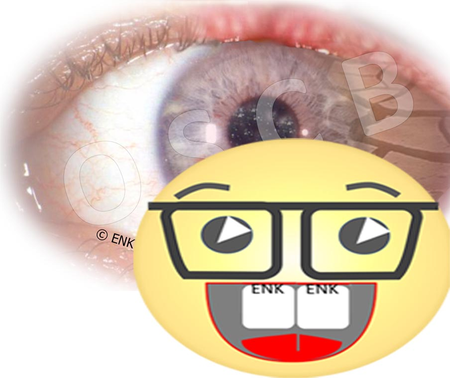 ZIELGRUPPEN-Symbol-Bilder VERSCHIEDENE 4 SCIENTIST mit Auge.jpg