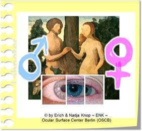 OSCB-Berlin.org, (c) ENK_Sex Hormones, GESCHLECHTS HORMONE_10 LINK BILDCHEN_.jpg