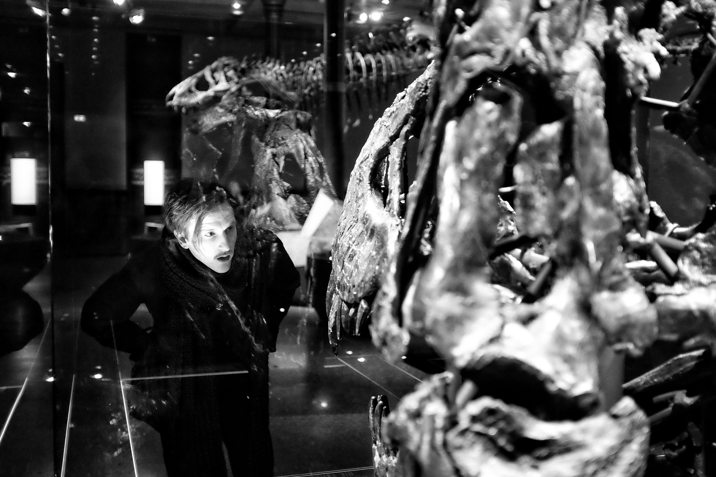 Tristan Otto, the museum's Tyrannosaurus Rex, has his real skull displayed separately, as it was too heavy to mount.
