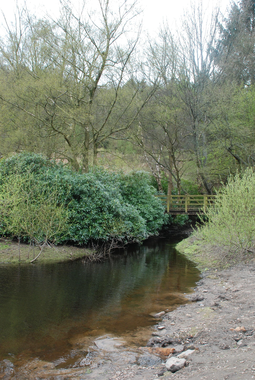 Peak District Bridge